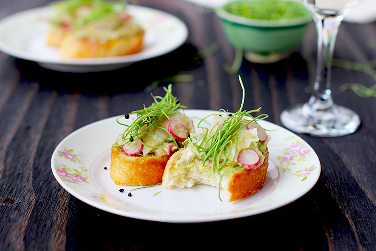 Fennel Radish Crostini